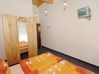 Apartment in Viehhofen/Saalbach, Salzburg Region, Austria