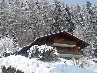 3 bedroom Apartment in Chateau d Oex, Alpes Vaudoises, Switzerland : ref 2296313