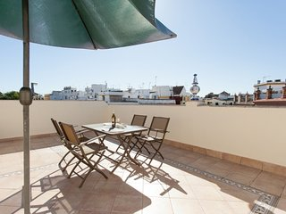Spectacular three bedroom apartment with private terrace at Triana