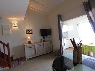 Ravissant appartement refait à neuf, Saint François