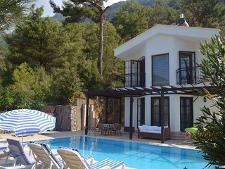 Villa Queen (PRIVATE) -Pool, OludenizArea, in Green, Yaniklar