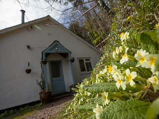 44082 Cottage in Berrynarbour, Woolacombe