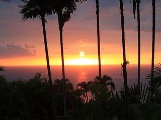 Luxury Island Home with 4 Master Suites, AC, Pool and Ocean Views! Halele'a, Kailua-Kona