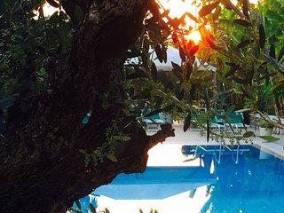 Appartamenti turistici Con piscina e bbq, Calmasino