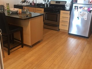 Cozy and Convenient Apt Close to Downtown Boston, Quincy