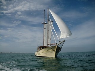 THE TOM THUMB - Beautiful Wooden Schooner 60feet, El Porvenir