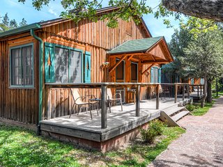 Colorado Bear Creek Cabin 4