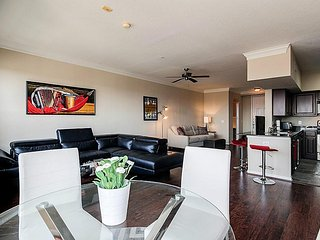Modern Apartment at Medical Center/NRG/MD Anderson, Houston