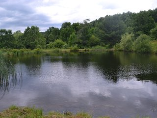 second pond, stocked little less than 1 acre