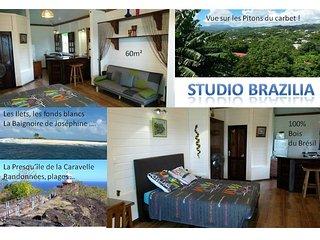 Studio BRAZILIA 60m² d'exotisme 100% bois