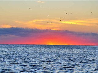 Condo on the Gulf, Hudson