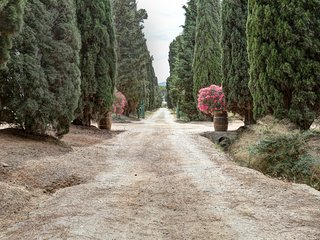 Cerida Villa - Bookwedo