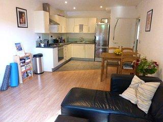 NEAR TUBE & STRATFORD - Large 2-bed apart w/garden, London