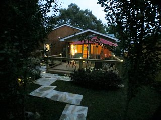 Green Monkey House  ~ Enchanting festival rental near town square, Mountain View