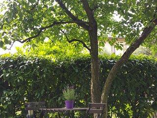 Casa Vacanze 'I Limoni Fioriti'