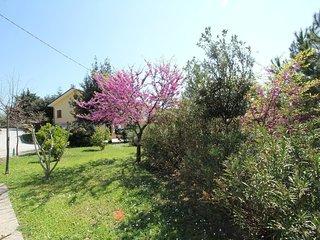 Casa Pinella, Petritoli