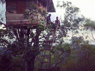 rumah pohon kamar kangin