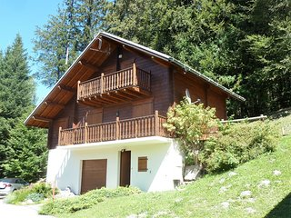 Ski Chalet, 4 bedrooms, sleeps 8 - FREEwifi, UK TV, Les Carroz-d'Araches