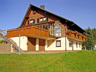 Schwarzwaldstrasse #5454, Furtwangen