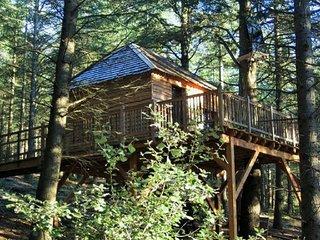 Cabane perchée dans une forêt de cèdre, Lastours