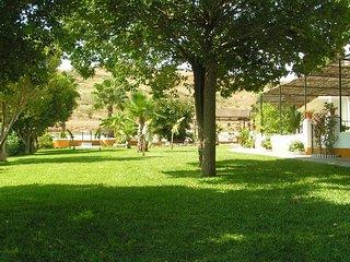 Parte del jardín q tiene 4000 metros