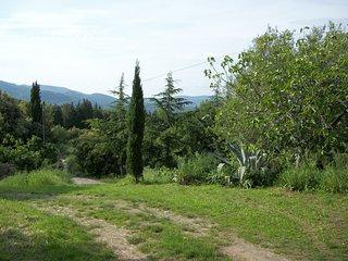 BELVEDERE DI SUVERETO Belvedere, Toscana, Italia, Suvereto