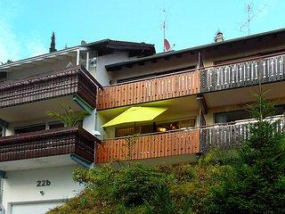 Ortenaublick #4398, Sasbachwalden