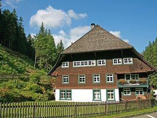 Historische Sägemühle #4418, Furtwangen