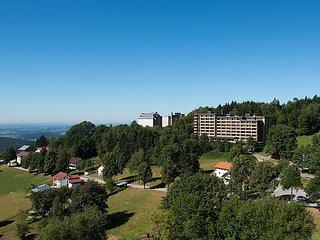 Geyersberg #4545, Geiselhoring