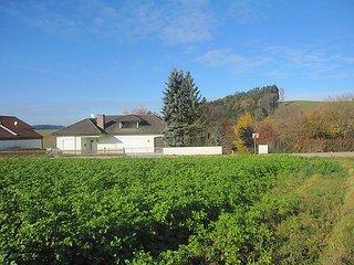 Landhaus im Klosterwinkel #4539, Vilshofen
