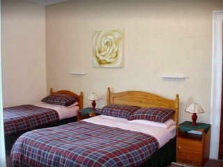 Pine Guest House (Twin/Double/Triple Room 2)