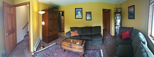 Downstairs Den with pull-out couch
