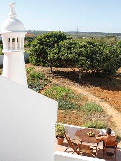 Vegetable garden 'air view'