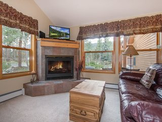 Snake River Village 26 - Walk to slopes, ground floor, washer/dryer, private, Keystone