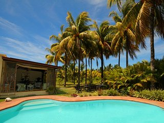 Villa Chez Zaza, great snorkeling, swimming with dolphins, wifi, pool, Le Morne