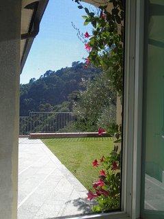 vista del giardino nord dalla finestra del bagno