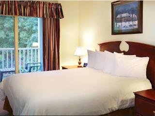 Wyndham Patriots' Place 2 Bedroom with linens and a FULL KITCHEN with cookware, alquiler de vacaciones en Williamsburg
