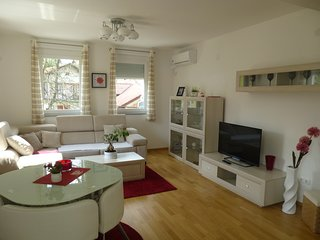 Apartment in center of Bihac