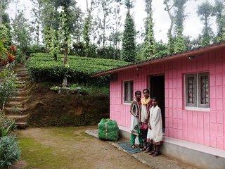 Sejour éco-solidaire dans les champs de thé, Gudalur