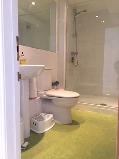 The family bathroom, containing a walk-in shower, toilet and wash basin