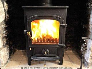 The log burner for additional heat
