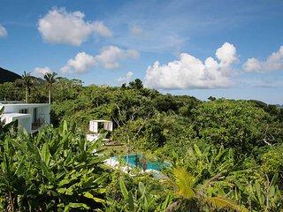 Modern Villa with Private Pool on Ishigaki Island