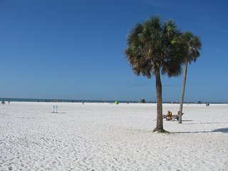 Gorgeous  3 bdrm 2 bath 5 mins from Siesta Beach, Sarasota