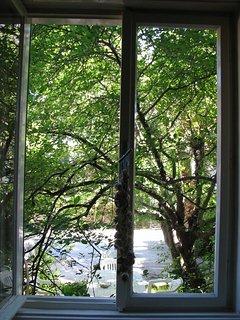 A(4): window view