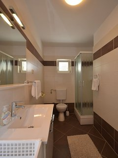 A1(6+2): bathroom with toilet