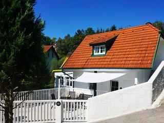 Ferienhaus BLACK & WHITE, Wiener Neustadt