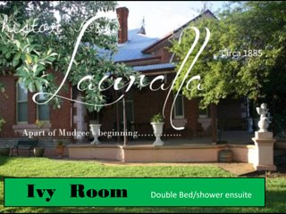 The Ivy room - double bed room, Mudgee