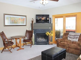 LR235- Charming 3 Bedroom 3 Bath Beautifully Furnished with Scenic Views, Dillon