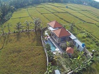 Puri Landu Ubud Villa