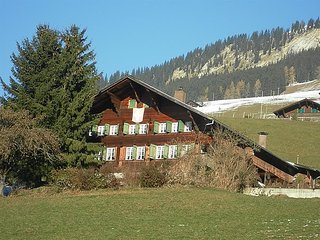 4 bedroom Apartment in Lenk, Bernese Oberland, Switzerland : ref 2299588, Lausanne